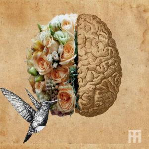 Memória do corpo